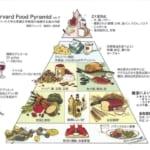 食は健康の礎