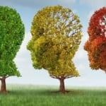 記憶力を助ける10の方法
