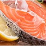 魚脂が脳を守る