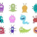 腸内細菌叢と健康