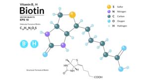 ビタミン B7   ビオチン