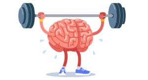 筋肉・脂肪と流動的知性